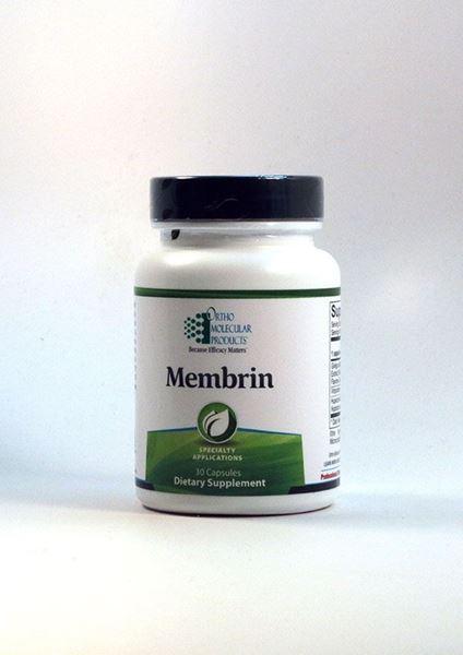 Membrin ,brain, brain support, brain nutrients, cognitive, cognitive function, cognitve health, brain health