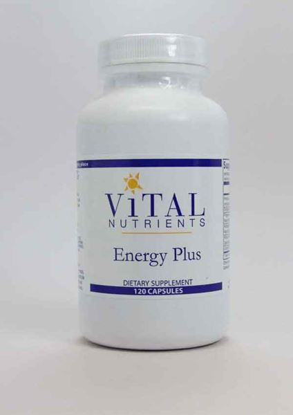 Vital Nutrients, non stimulant, energy support, herbal energy, stress relief, adrenal function, stamina, mental stamina, physical stamina
